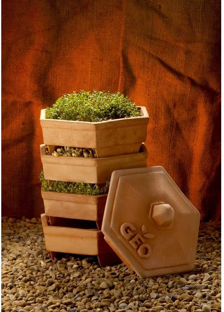 Germinador ecologico de barro terracota