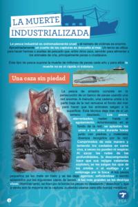 datos de la industria pesquera